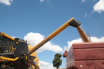 Trung Quốc sẵn sàng mua gấp đôi nông sản Mỹ trong năm thứ 2 của thỏa thuận