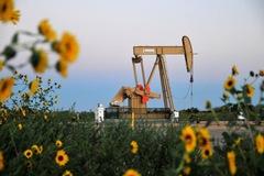 Tồn kho tại Mỹ tăng, giá dầu tiếp tục giảm