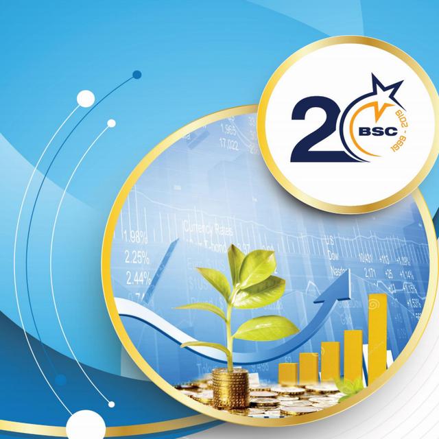 BSC: Báo cáo triển vọng ngành 2019