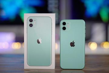iPhone 11 chính hãng bán nhiều gấp đôi năm ngoái