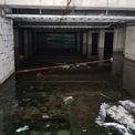 <p> Khu vực để xe, các căn phòng dưới tầng hầm chìm trong nước lâu ngày tạo thành màu đen đầy rong rêu, ngập sâu đến bụng người lớn. Rác, vật liệu xây dựng mục nát nổi lềnh bềnh.</p>
