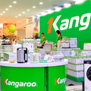 Biên lợi nhuận gộp tăng, Kangaroo lãi quý III tăng gần 2 lần