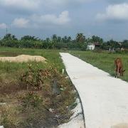 Chấn chỉnh chuyển nhượng đất nông nghiệp, chặn sốt đất