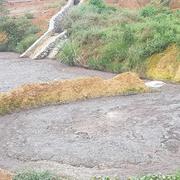 Trại gà gây ô nhiễm môi trường ở Phú Thọ bị phạt hơn 440 triệu