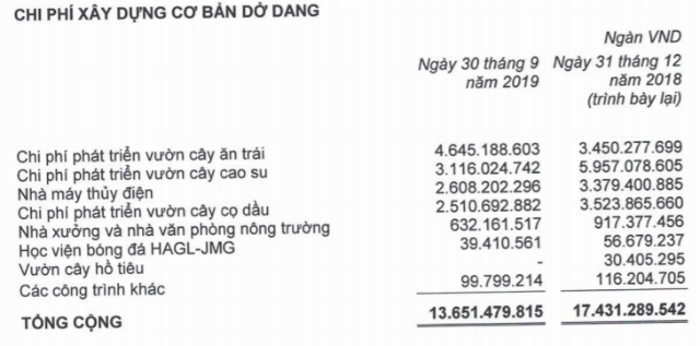 Nguồn: BCTC HAGL