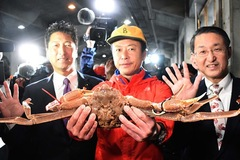 Con cua tuyết Nhật Bản giá hơn 1 tỷ đồng