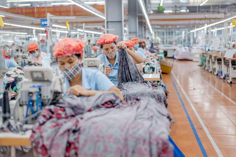May Sông Hồng trả cổ tức tiền mặt 45%
