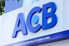 Một công ty vốn chỉ 5 tỷ đi vay nước ngoài 1.400 tỷ đồng với lãi suất 20%/năm để mua 60 triệu cổ phiếu ACB?
