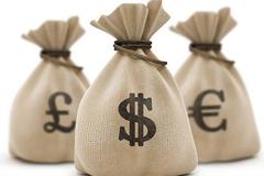 RCD chốt quyền trả cổ tức 50% bằng tiền, cổ phiếu tăng trần