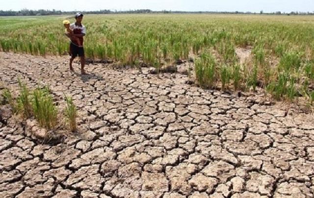 Năm 2020 sẽ ưu tiên vốn ODA khắc phục biến đổi khí hậu