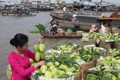 Gạo, trái cây của An Giang có cơ hội xuất khẩu sang Mỹ