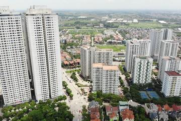 Lo đất tăng giá năm 2020, môi giới giục khách mua nhà