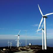Tập đoàn Ireland muốn sớm triển khai dự án điện gió 2 tỷ USD tại Sóc Trăng