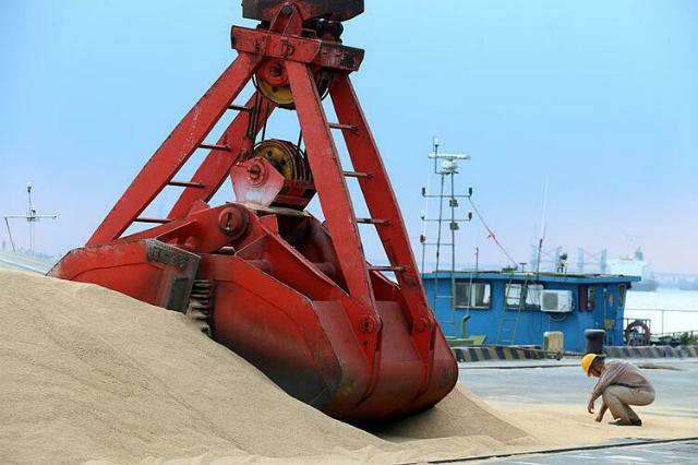 Đậu tương nhập khẩu tại một cảng biển ở Giang Tô (Trung Quốc). Ảnh: Reuters