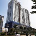 <p> Dự án Tây Hồ Residencebao gồm 2 tòa tháp cao 27 tầng, với 3 tầng hầm thông nhau giữa 2 tòa nhà và 6 tầng dành cho trung tâm thương mại.</p>