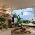 <p> Phía sau bếp là phòng khách được bài trí như một khu vườn nhỏ với giếng trời, bể cá.</p>