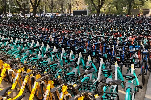 Theo Louise Moon, hình thức chia sẻ xe đạp chưa xuất hiện khi cô ở Bắc Kinh 5 năm trước. Ảnh: SCMP.