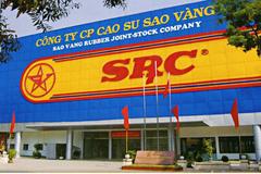 Chủ tịch Hoành Sơn được đề cử vào HĐQT Cao su Sao Vàng