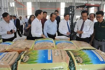 Khánh thành Trung tâm công nghiệp chế biến hạt giống và nông sản hiện đại bậc nhất