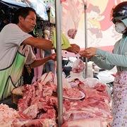 Có hiện tượng làm giá lợn hơi?