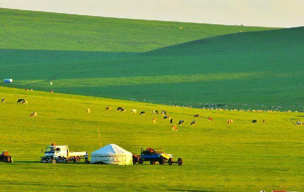 Khám phá những đồng cỏ tuyệt đẹp của Nga và Trung Quốc