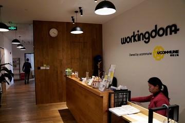 Chưa có lãi vẫn IPO, startup chia sẻ văn phòng này có lặp lại kịch bản của WeWork?