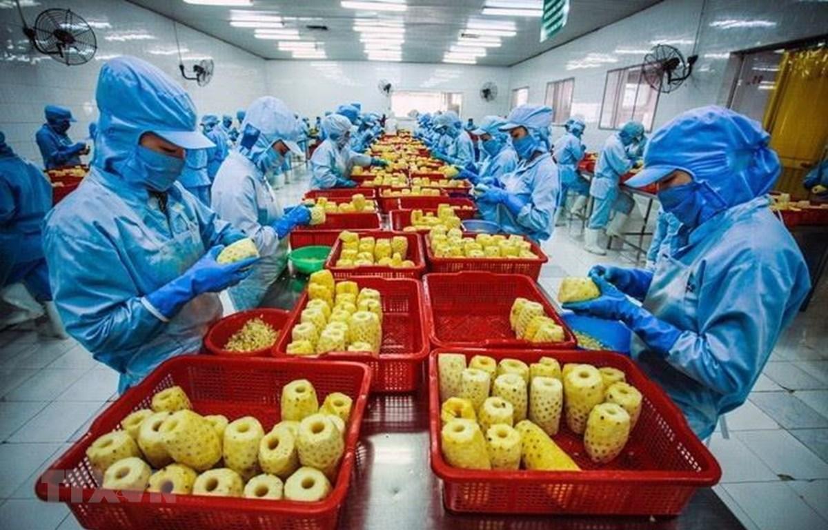 Xuất khẩu nông, lâm, thuỷ sản đạt 41,3 tỷ USD