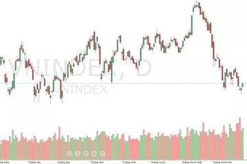 Xu thế dòng tiền: 'Nhờn' tin xấu, thị trường có cơ hội tăng?