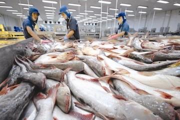 Xuất khẩu cá tra sang hầu hết thị trường đều giảm 2 con số