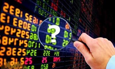 VinaCapital, J.P. Morgan, PYN Elite chọn cổ phiếu gì cho năm 2020?