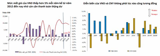 Nguồn: BVSC