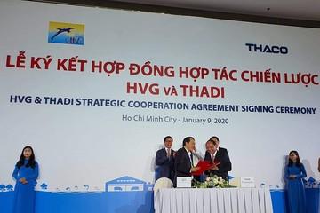 Thadi sẽ mua 35% vốn và lập liên doanh nuôi heo 2.000 tỷ đồng với Hùng Vương