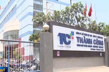 Công ty mẹ TCM báo lãi quý IV ước tăng 170% đạt 54 tỷ đồng