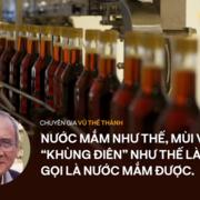 Chuyên gia Vũ Thế Thành 'đọc vị' thực chất của nước mắm soda công nghiệp: Đừng nhân danh cái này loại trừ cái kia!