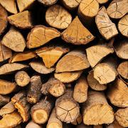 Phú Tài ước lãi trước thuế 550 tỷ đồng, mảng gỗ tăng 70%