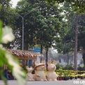 <p> Hình ảnh tác phẩm đan lát lục bình Gia đình nhà chuột được trưng bày tại đường hoa xuân Cao Lãnh. Ảnh: <em>đâu đó Cao Lãnh</em></p>