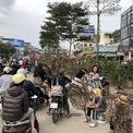 <p> Đoạn đường Hoàng Quốc Việt liền kề Hoàng Hoa Thám nơi việc mua bán hoa cây cảnh diễn ra tấp nập.</p>