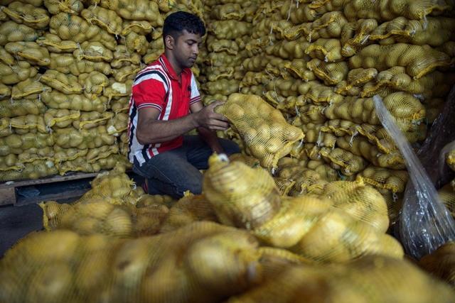 Ngành nông nghiệp đóng góp 99,5 tỷ ringgit vào GDP Malaysia trong năm 2018. Ảnh: AFP.