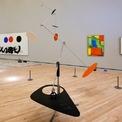 <p> Alice đã mở một bảo tàng có tên Crystal Bridges vào năm 2011 để lưu giữ bộ sưu tập nghệ thuật trị giá 500 triệu USD mà bà sở hữu. Ảnh: <em>AP.</em></p>