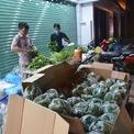 <p> Đi kèm cá lóc nướng là các loại rau. Để thuận tiện, nhanh chóng, ngay từ đêm, các gia đình đã phải phân loại rau và đóng vào túi sẵn.</p>