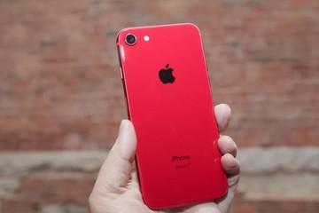 iPhone SE 2 có thể đang được sản xuất, ra mắt vào tháng sau