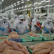 Thanh tra Bộ Nông nghiệp Mỹ đánh giá an toàn thực phẩm với cá tra Việt Nam