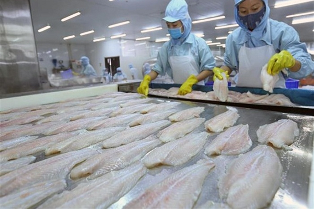 Doanh nghiệp thủy sản chưa bị ảnh hưởng bởi nCoV do xuất sang Trung Quốc bằng đường biển