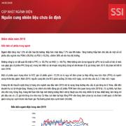 SSI Research: Ngành điện - Nguồn cung nhiên liệu chưa ổn định