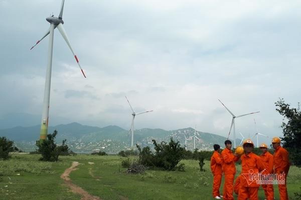 Điện gió đang thu hút nhiều nhà đầu tư quan tâm.