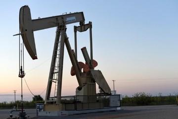 Giá dầu tăng 1%, thoát đáy 13 tháng