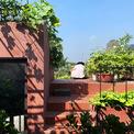 <p> Ngoài trồng rau, chủ nhà đặt thêm nhiều cây cảnh trên mái, thậm chí tận dụng các diện tích trồng cây dây leo như mướp.</p>