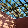 <p> Khu vực giếng trời được phủ kín bởi cây dây leo, vừa tiết kiệm được diện tích trồng cây vừa mang lại khoảng không xanh mát cho ngôi nhà.</p>