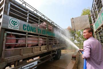 Yêu cầu doanh nghiệp giảm giá thịt heo xuống dưới 75.000 đồng/kg