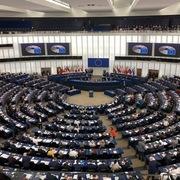 Nghị sĩ EP: Việt Nam là đối tác đáng tin cậy và cởi mở